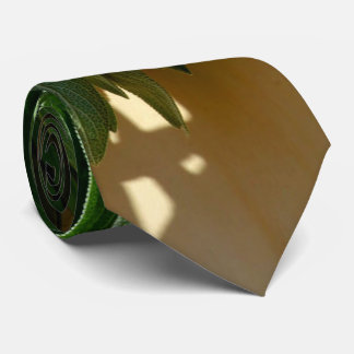 Cravate Sauge classique