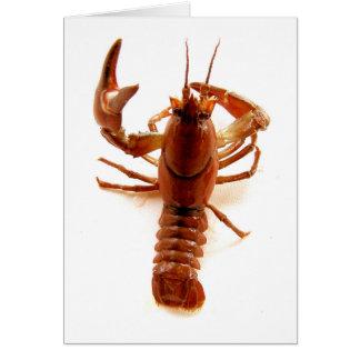 Crayfish Card