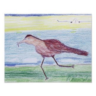 Crayon drawing of a bird running and a plane. poster