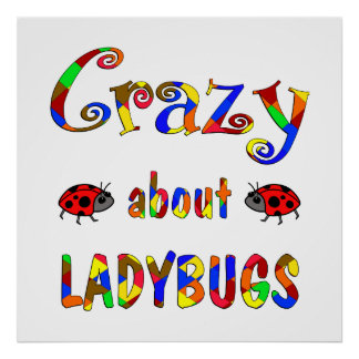 Crazy About Ladybugs Print