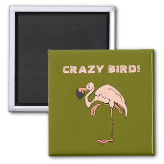 Crazy Bird Magnet