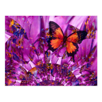 Crazy Butterfly Postcard
