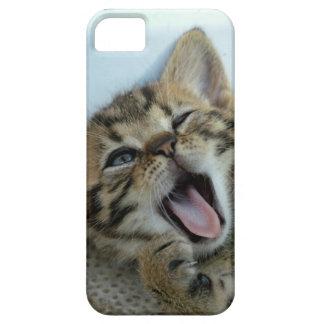 Crazy Cat case iPhone 5 Covers