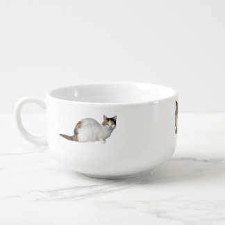 Crazy Cat Lady Soup Mug