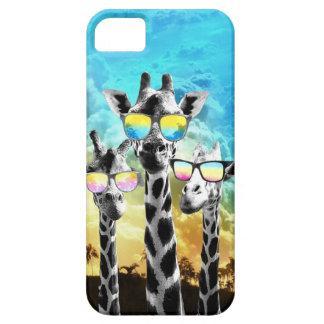 Crazy Cool Giraffe iPhone 5 Case