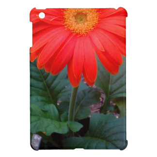 Crazy Daisy iPad Mini Cover