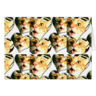 Crazy Disco Funny Cat Blank Note Card W/ Envelope