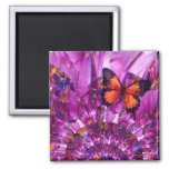 Crazy Flower Butterfly Square Magnet