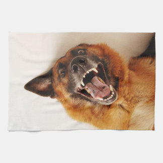 Crazy funny dog kitchen towel