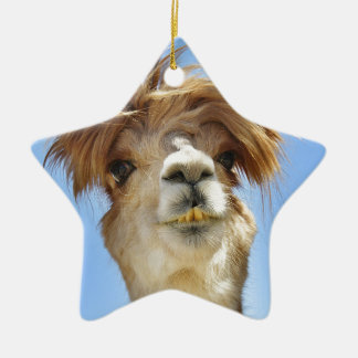 Crazy Hair Alpaca Ceramic Star Ornament