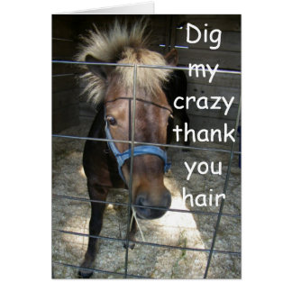 CRAZY HORSE THANK YOU CARD