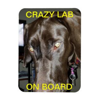 Crazy Lab On Board Magnet