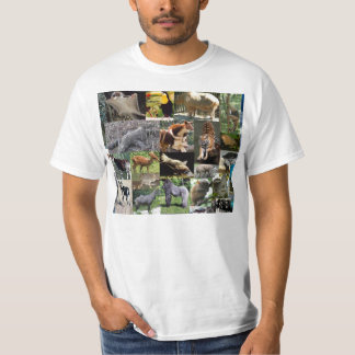 Crazy Safari T Shirt