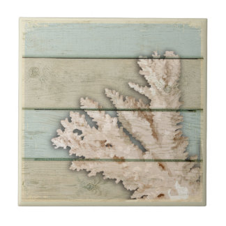 Cream Colored Coral Ceramic Tile