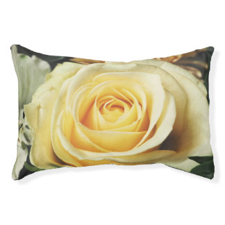 Cream Colored Rose Pet Bed