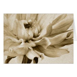 Cream Dahlia Flower - Dahlias Floral Background Card