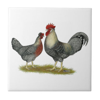 Cream Legbar Chickens Tile