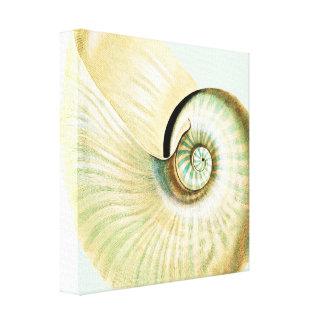 Cream Mint Beach Sea Shell Canvas Print