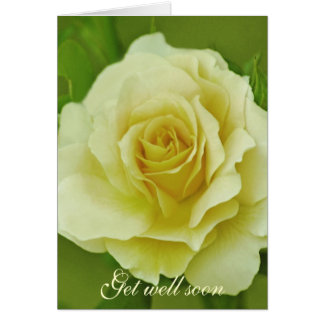 Cream Rose and meaning Card
