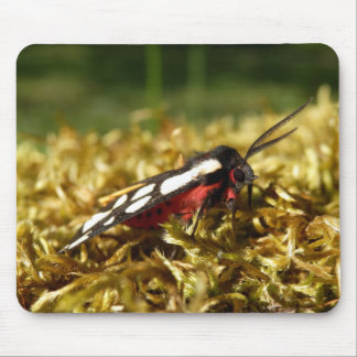 Cream-spot Tiger Moth Mouse Mat