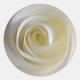 Creamy White Rose Stickers