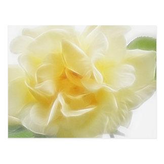 Creamy Yellow Rose 2 Postcard