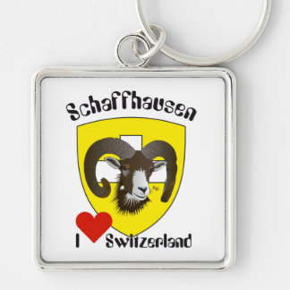 Create-live Switzerland key supporters Silver-Colored Square Keychain
