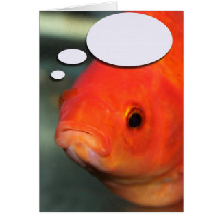 Create Your Own Caption, Goldfish Card