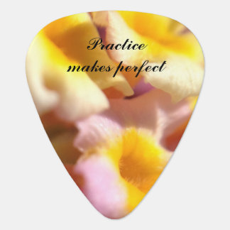 Create your own floral guitar pick
