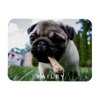 Create Your Own Funny Photo Custom Magnet