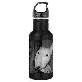 Create Your Own Keepsake-English BT-Snuggled-BW 532 Ml Water Bottle