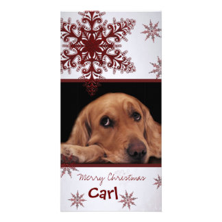 Create your own pet photo card