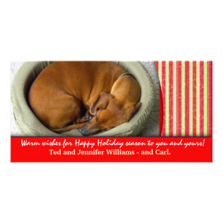 Create your own pet photo holiday card customized photo card