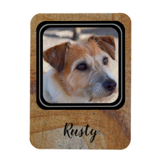 Create your own pet photo magnet