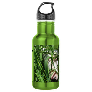 Create Your Own Photo-English Bull Terrier Hiding 532 Ml Water Bottle