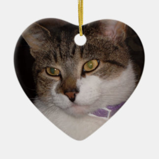Create your own photo Heart ornament template