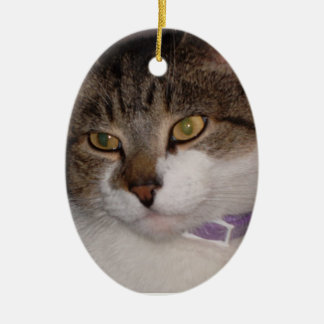Create your own photo Oval Ornament Template