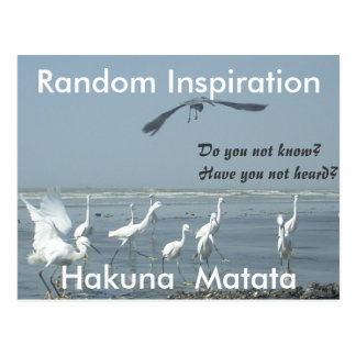 Create Your Own Random Inspiration Customize Postcard