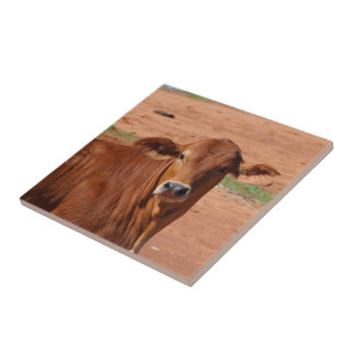Create your own square tile - Australian cattle