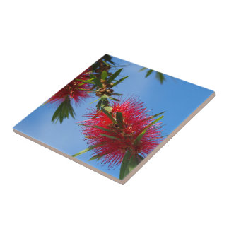 Create your own square tile - bottlebrush