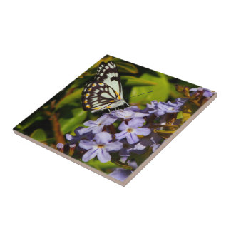 Create your own square tile - butterfly