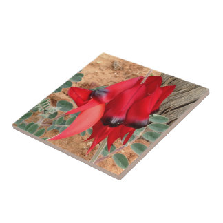 Create your own square tile - Sturt's Desert Pea