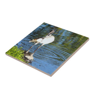 Create your own square tile - White Ibis