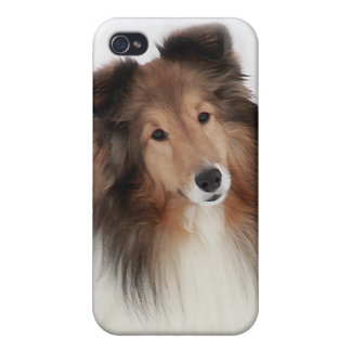 Creation of Shelties iPhone 4/4S Cover