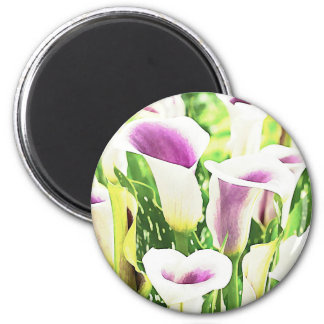 Creative colors Callas 2 Inch Round Magnet