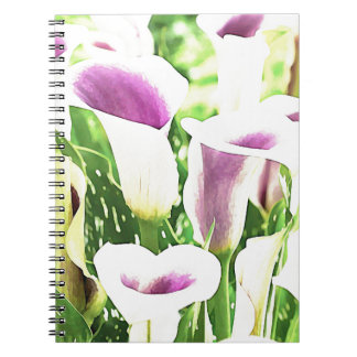 Creative colors Callas Notebooks