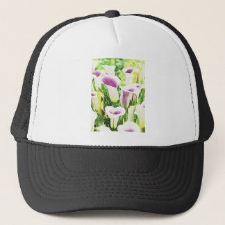 Creative colors Callas Trucker Hat