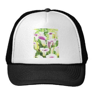 Creative colors Callas Trucker Hat