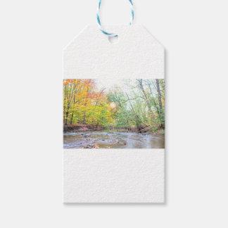 Creek - Fall Gift Tags
