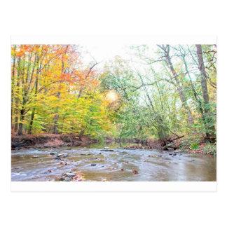 Creek - Fall Postcard